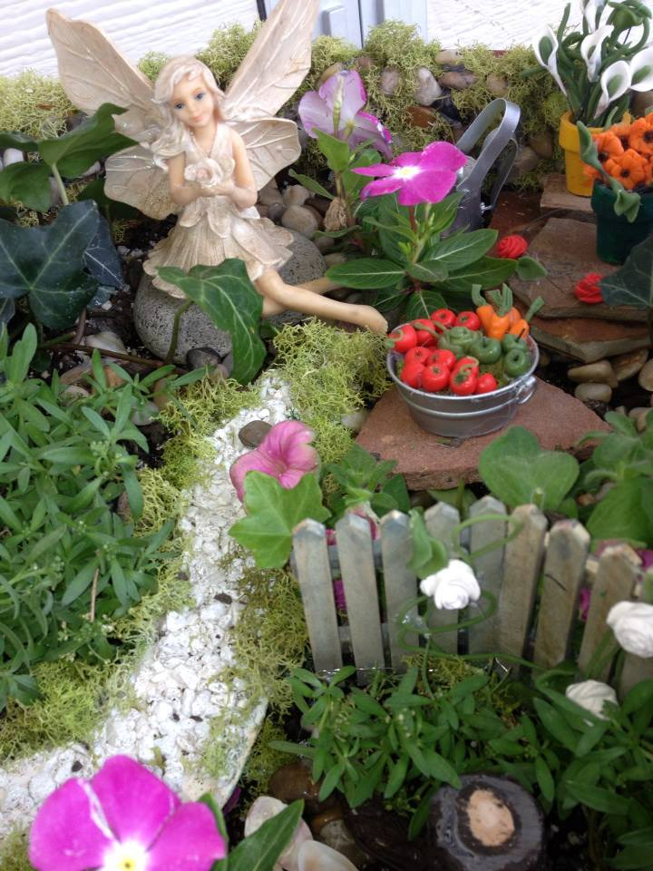 Fairy Garden6